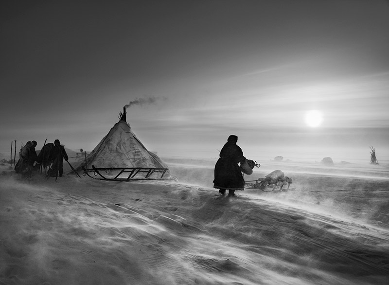When the weather is particularly hostile, the Nenets and their reindeer may spend several days in the same place. North of the Ob River, inside the Arctic Circle. Yamal Peninsula. Siberia. Russia. 2011. © Sebastião Salgado / Amazonas images