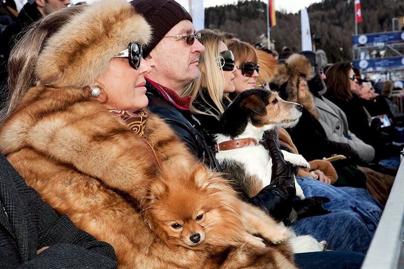 From 'Luxury'. Snow Polo World Cup. St Moritz. SWITZERLAND 2011 © Martin Parr / Magnum Photos und Kunstfoyer