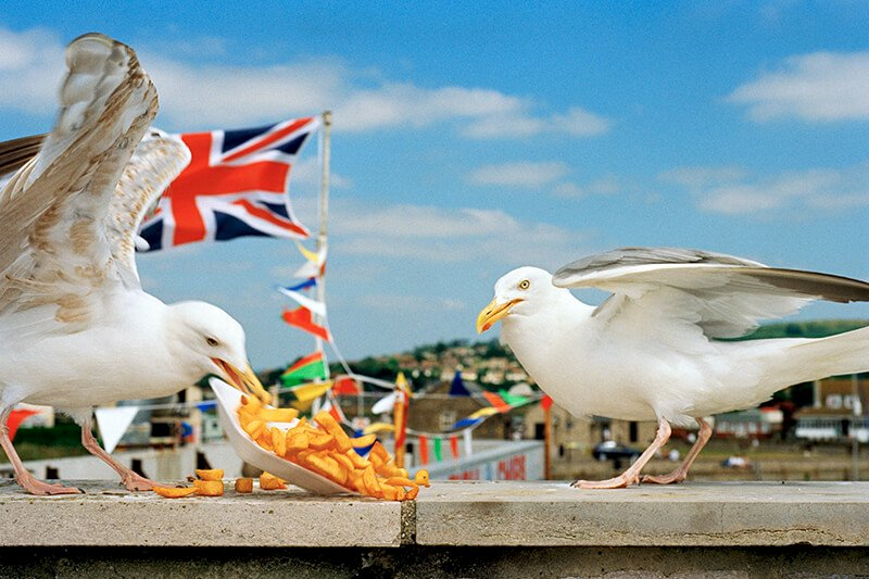 From 'Think of England'. West Bay. Dorset. England. GB 1996 © Martin Parr/Magnum Photos und Kunstfoyer